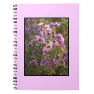 Bright,  Colorful Aster Spiral Notebook