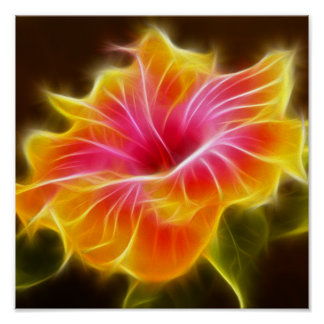 Bright Colorful Hibiscus Flower Poster