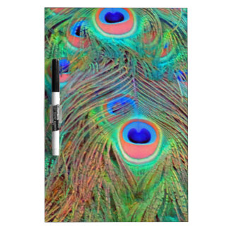 Bright Colorful Peacock Feathers Dry Erase Board