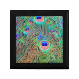 Bright Colorful Peacock Feathers Gift Box