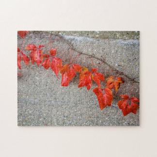 Bright coloured autumn leaves photo puzzle