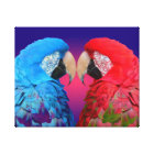 Bright colourful macaw or parrot canvas print