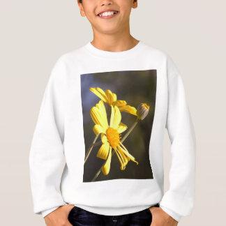 Bright Daisy Sweatshirt
