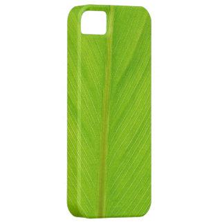 bright green fresh leaf iPhone 5 cases
