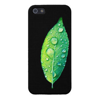 Bright green leaf with raindrops on black iPhone 5 covers