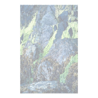 Bright green moss on rocks from the Forest Personalized Stationery