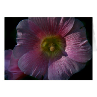 Bright Hollyhock Card