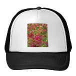 Bright Hot Pink and Yellow Daisy flowers Mesh Hats