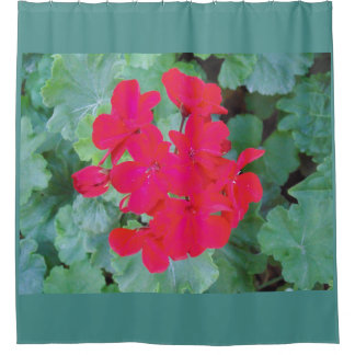 Bright Magenta Flowers Shower Curtain