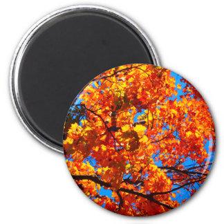Bright Orange Autumn Leaves Photo 6 Cm Round Magnet