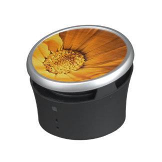 Bright orange daisy speaker