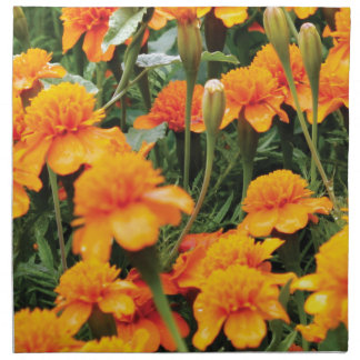 bright orange flowers napkin