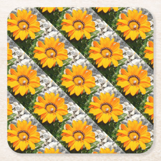 Bright Orange Gazania Flower with Snail Square Paper Coaster