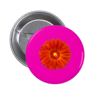 Bright Orange Gerbera Daisy on Hot Pink Pins