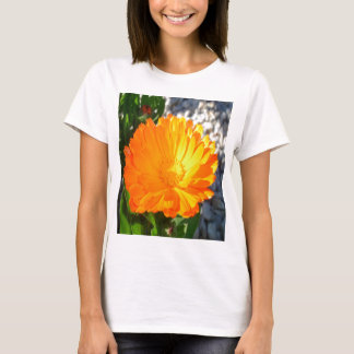 Bright Orange Marigold In Bright Sunlight T-Shirt