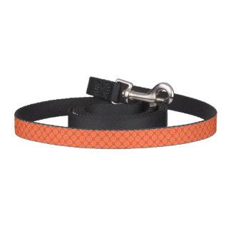 Bright Orange Pattern with Floral Circle Pattern Dog Leash