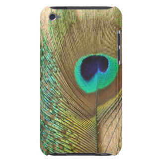 Bright peacock eye bird feather girly chic photo barely there iPod covers