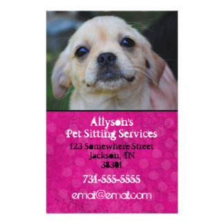 Bright Pink Background Pet Sitting Flyers