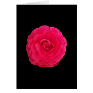 Bright Pink Camellia Greeting Card