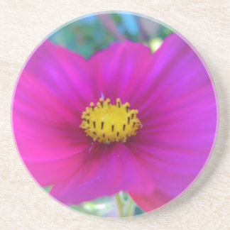 Bright Pink Cosmo Drink Coaster