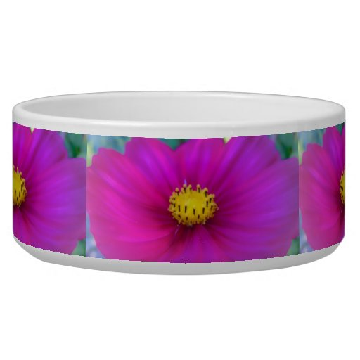 Bright Pink Cosmo Pet Food Bowls