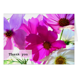 Bright Pink Cosmos Flowers Thank You Note Card