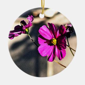 Bright Pink Cosmos - Three Round Ceramic Decoration
