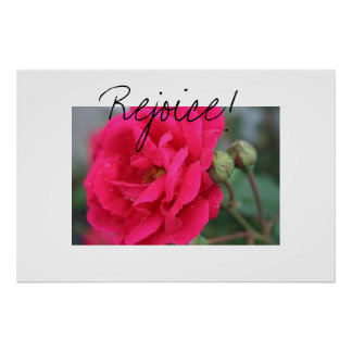 Bright Pink Peony Poster