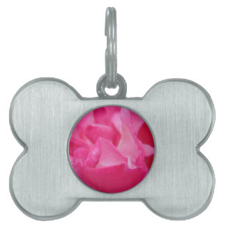 Bright Pink Rose Petals Pet Name Tag