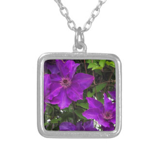 Bright Purple Jackmanii Clematis Vine Silver Plated Necklace