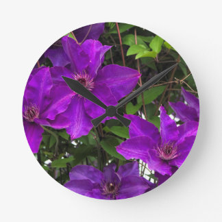 Bright Purple Jackmanii Clematis Vine Wallclocks