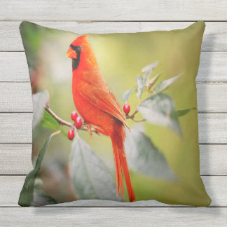 Bright Red Cardinal Outdoor Cushion