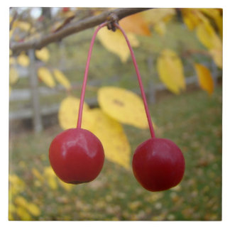 Bright Red Crab Apples Photo Tile
