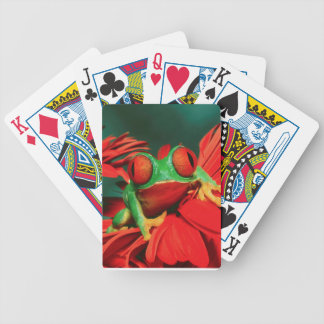 Bright Red-Eyed Frog Poker Deck