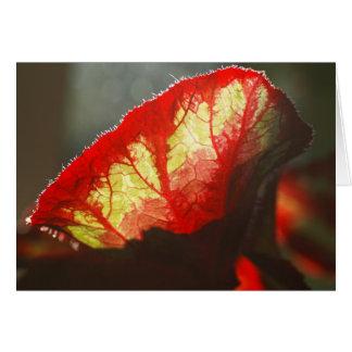 Bright red leaf card