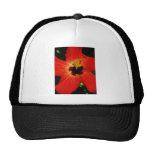 Bright Red Orange  Hibiscus Flower Hats