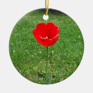 Bright Red  Poppy Round Ceramic Decoration