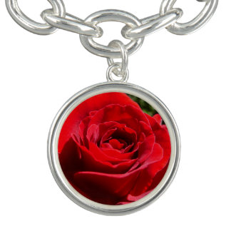 Bright Red Rose Flower Beautiful Floral