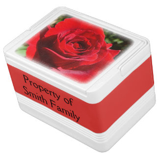 Bright Red Rose Flower Beautiful Floral Cooler
