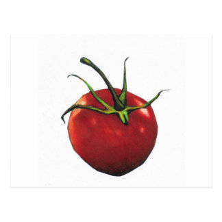 BRIGHT RED TOMATO POSTCARD