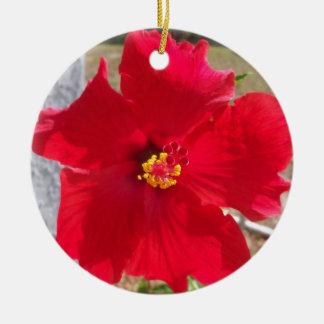 bright red tropical hibiscus flower ceramic ornament