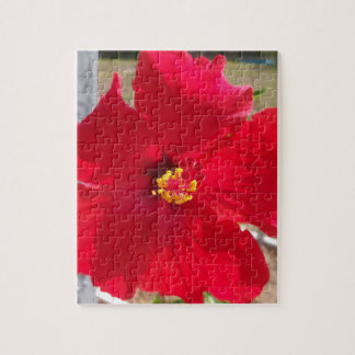 bright red tropical hibiscus flower jigsaw puzzle