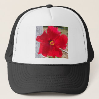 bright red tropical hibiscus flower trucker hat