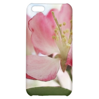 Bright Spring Apple Blossoms iPhone 5C Cover