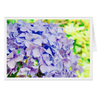 Bright Summer Hydrangea Card