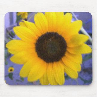 Bright Sunflower Mousepads