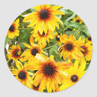 Bright Yellow Black Eyed Susans Classic Round Sticker