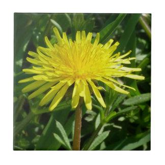 Bright Yellow Dandelion Small Square Tile