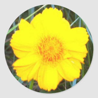 Bright Yellow Flower Classic Round Sticker