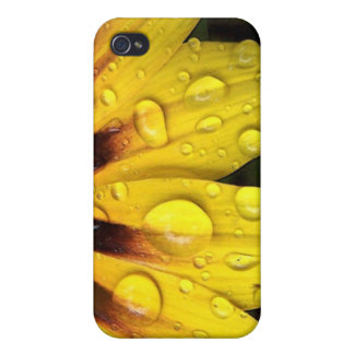 Bright Yellow Gazania Flower iPhone4 Case iPhone 4 Cover